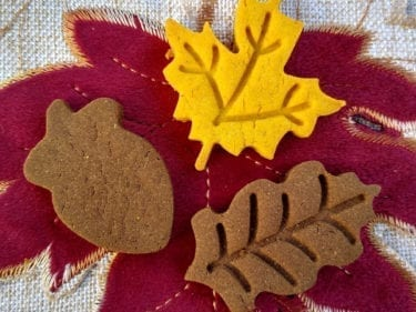 Fall Maple Dog Treats
